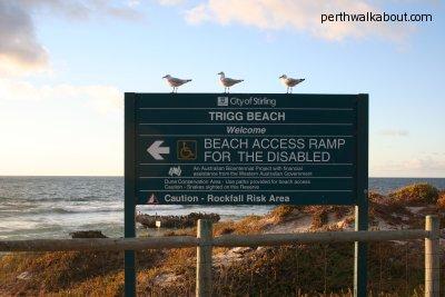 Perth Beach by Nita Teoh