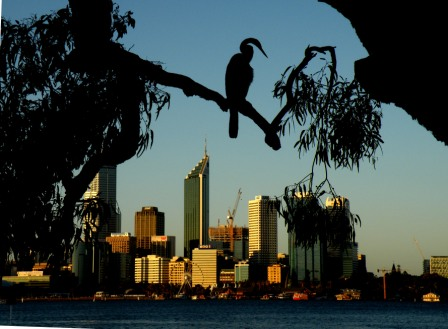 What to do in Perth – off the beaten track