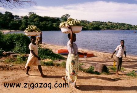 Malawi by Jo Castro