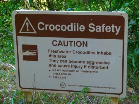Crocodile safety