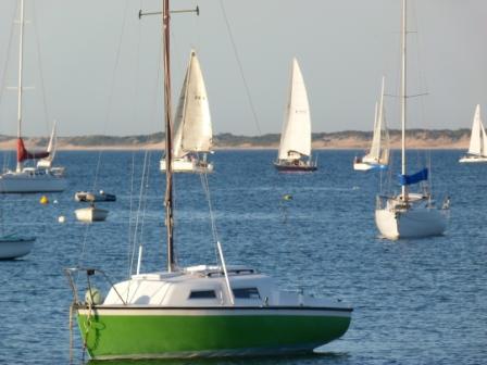 Sailing in Bunbury by Jo Castro