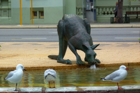 Perth, Kangaroo by Jo Castro