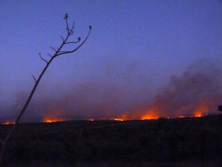 Kimberley, Outback Australia by Jo Castro