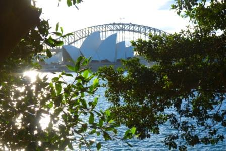 Sydney Opera House nestled under The Harbour Bridge by Jo Castro