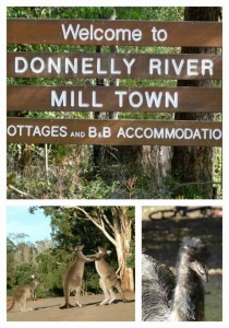 Donnelly River by Jo Castro