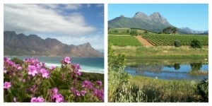 The Cape South Africa, reasons to visit south africa by jo castro