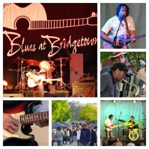 Fabulous festivals in South West Australia, Bridgetown Blues by Jo Castro