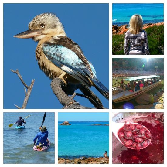 Western Australia by Jo Castro