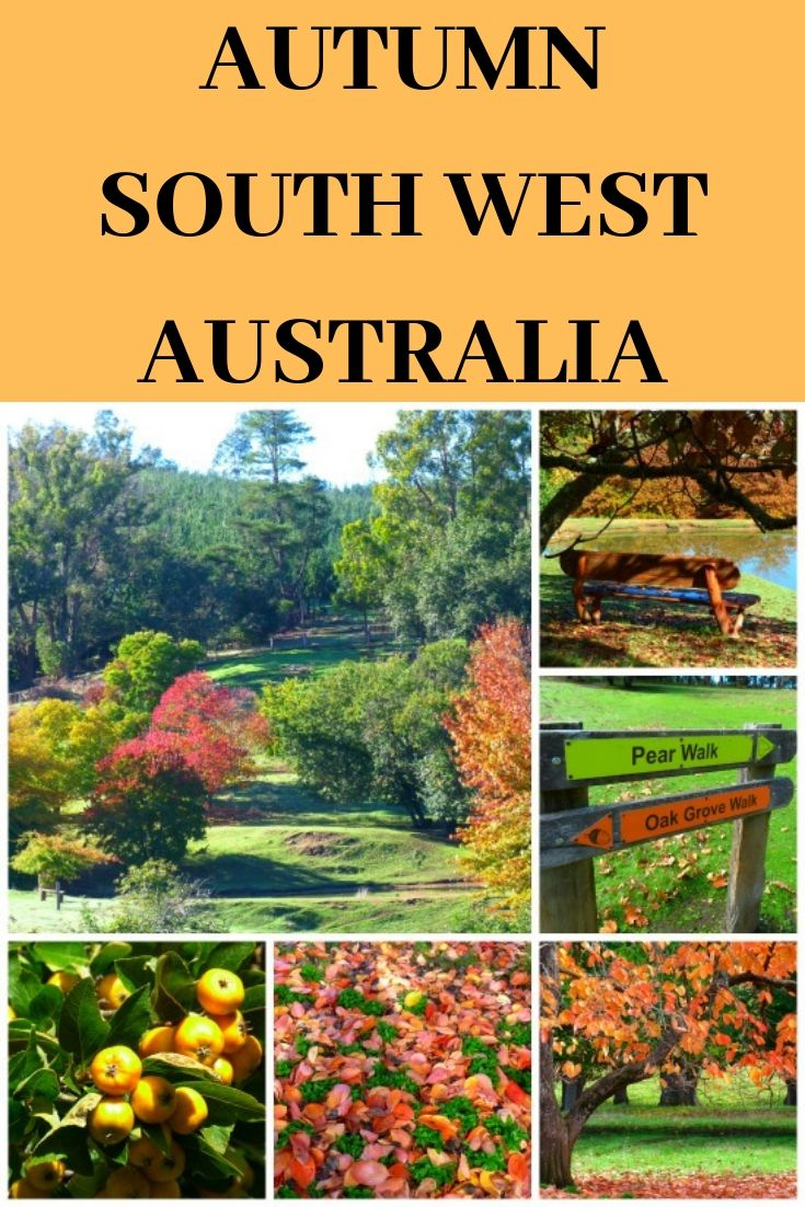 Autumn Colours South Western Australia