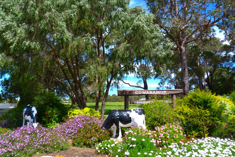 Top 10 Things to do around Margaret River. In the heart of the region try Cowaramup – Where?