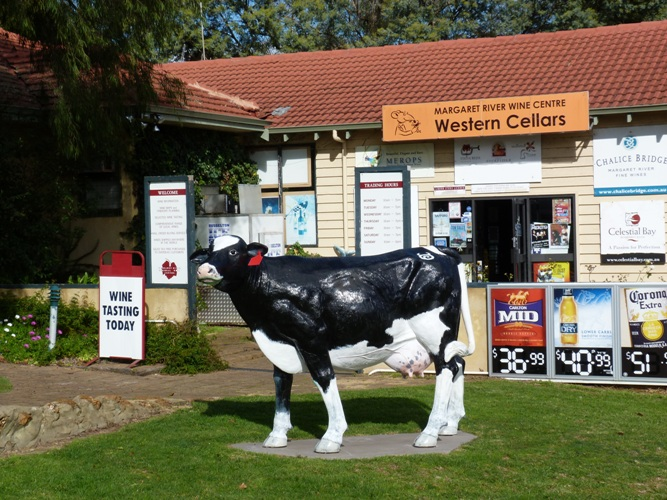 Top 10 Things to do around Margaret River and Cowaramup