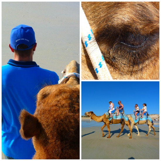 Top 15 Things to do in Broome