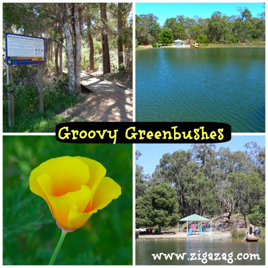 Greenbushes-jo-castro-zigazag