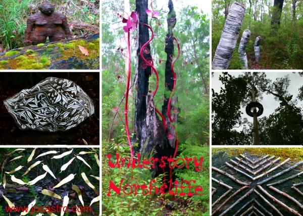 Understory-Northcliffe-Western Australia
