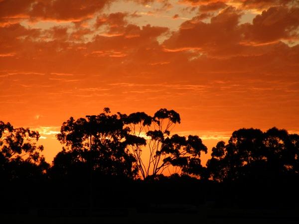 Idyllic lifestyle in Western Australia