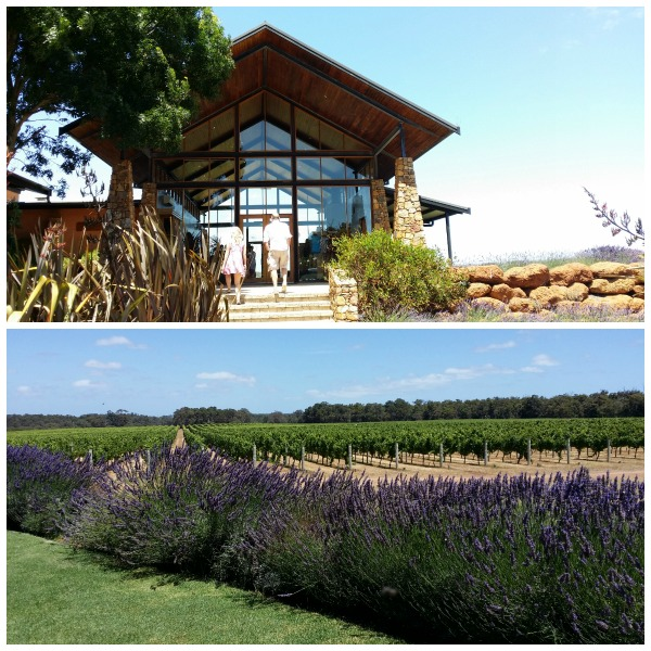 Top Margaret River Wineries