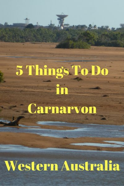5 Things to do in Carnarvon Western Australia. Pic by Catherine Curnow.