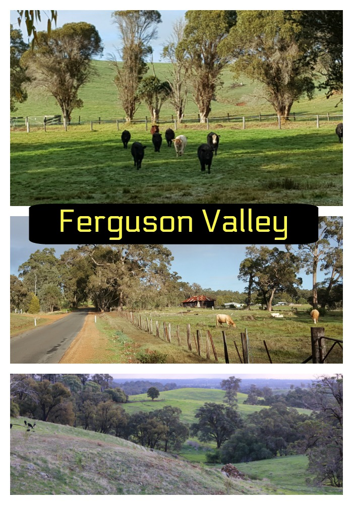 ferguson-valley-accommodation