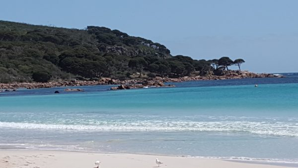 Bunker Bay looking to Shelley Beach