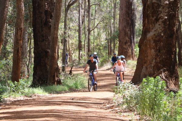 fun things to do in margaret river