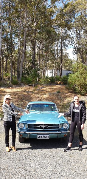 Mr Mustang Hire, Blue 1965 Mustang