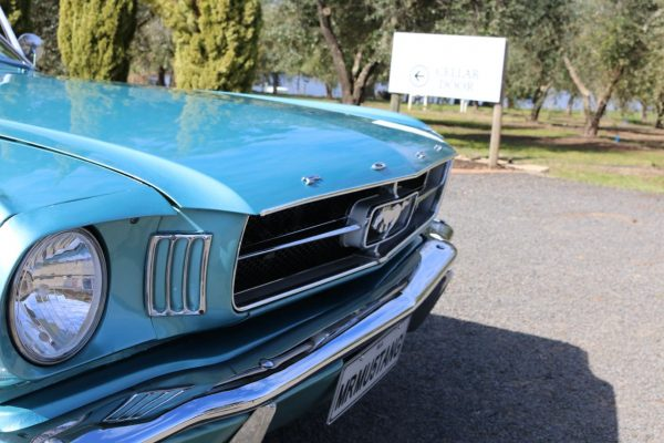 Blue Mustang 1965 Coupe